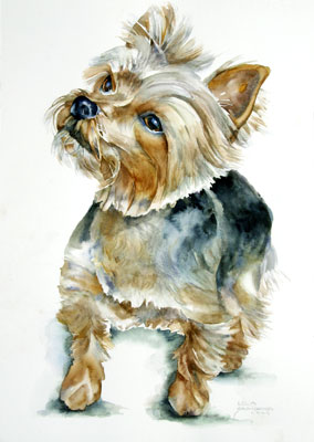 Pet Portraits In Watercolor