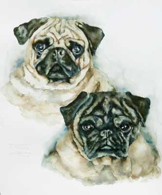 Watercolor of Pug dogs